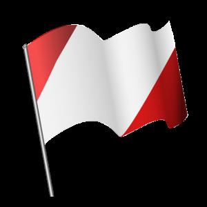 bandera-ondeando